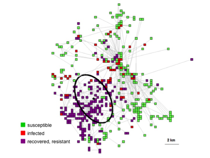 Epizooty spreading in a heterogeneous network of epidemiological units